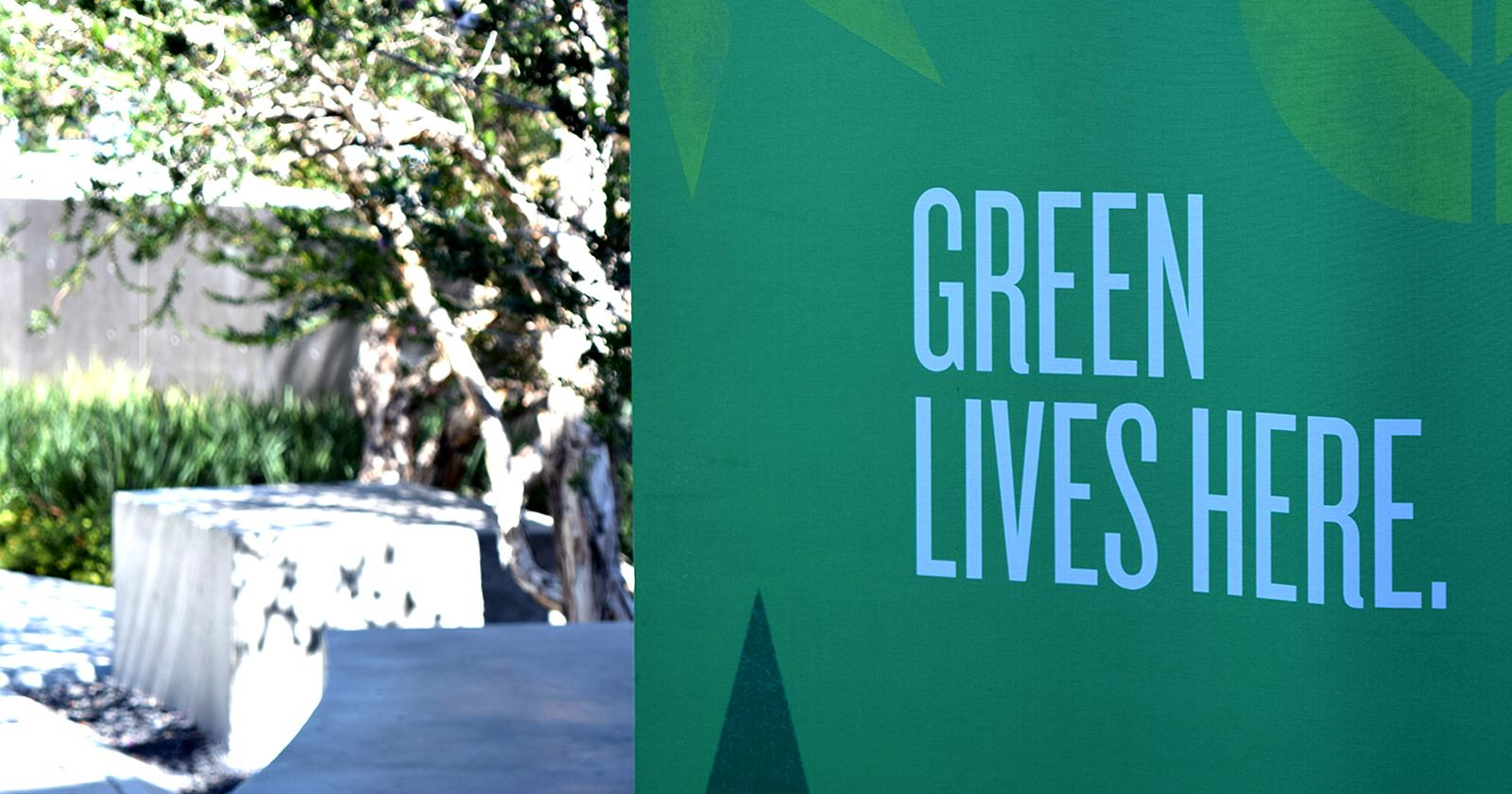 Green lives here